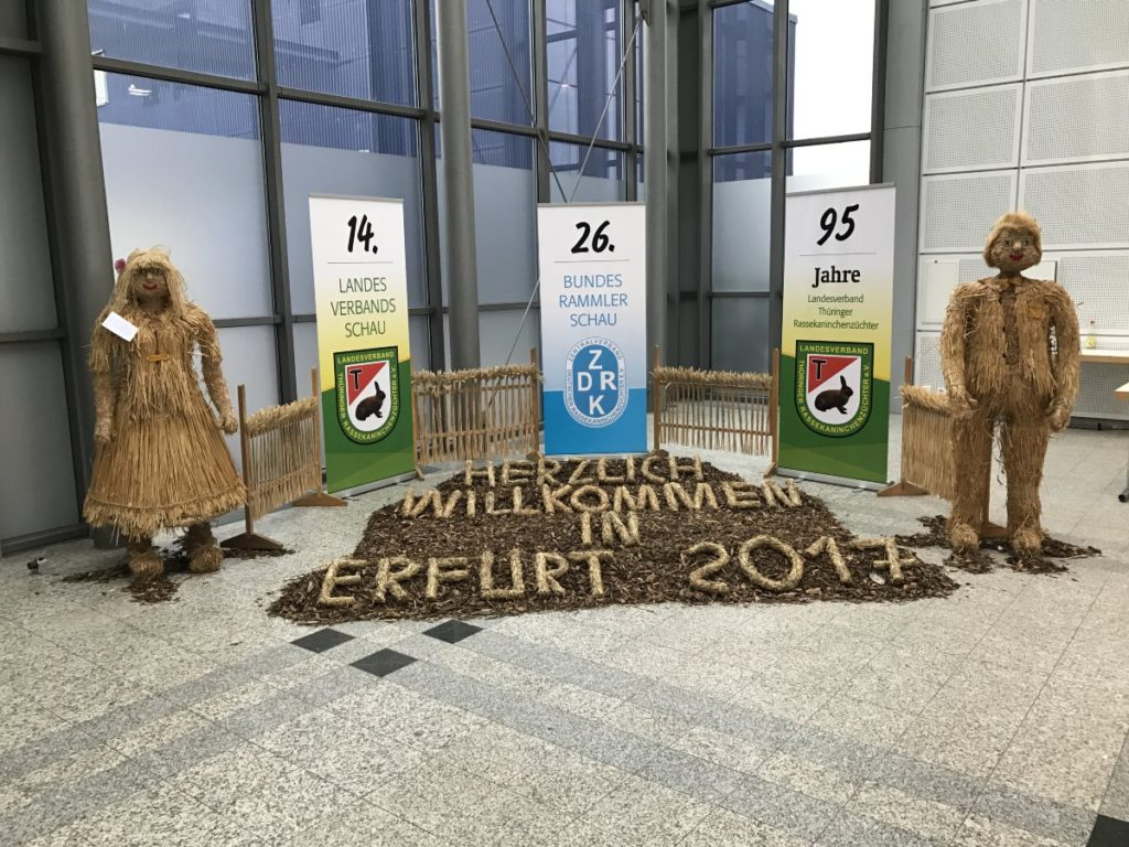 Bundesrammlerschau 2017 Erfurt